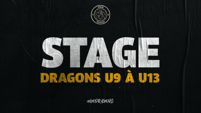 FORMATION : STAGE DRAGONS U9 À U13